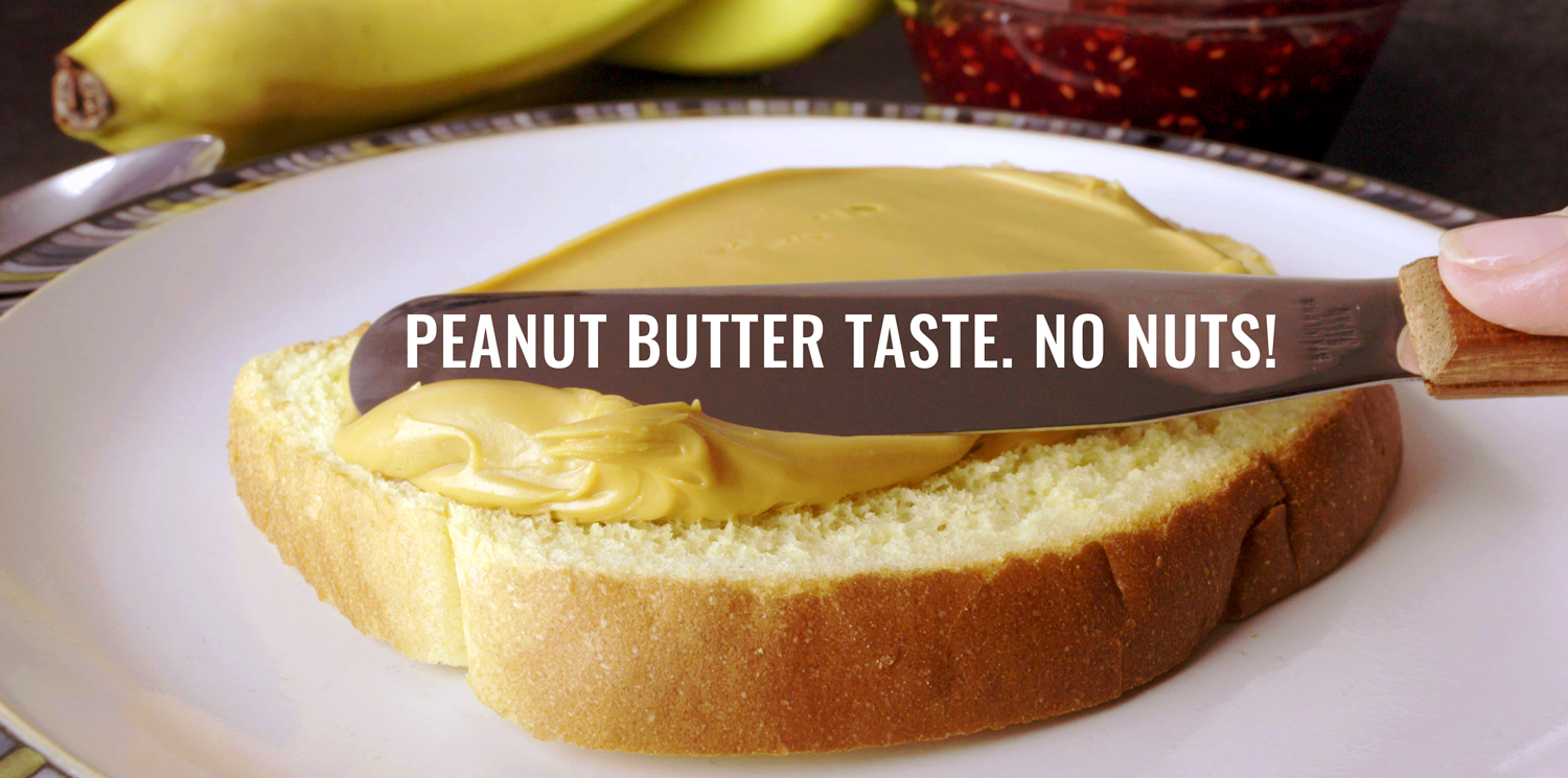 The Amazing Chickpea - Peanut Butter Taste. No Nuts!